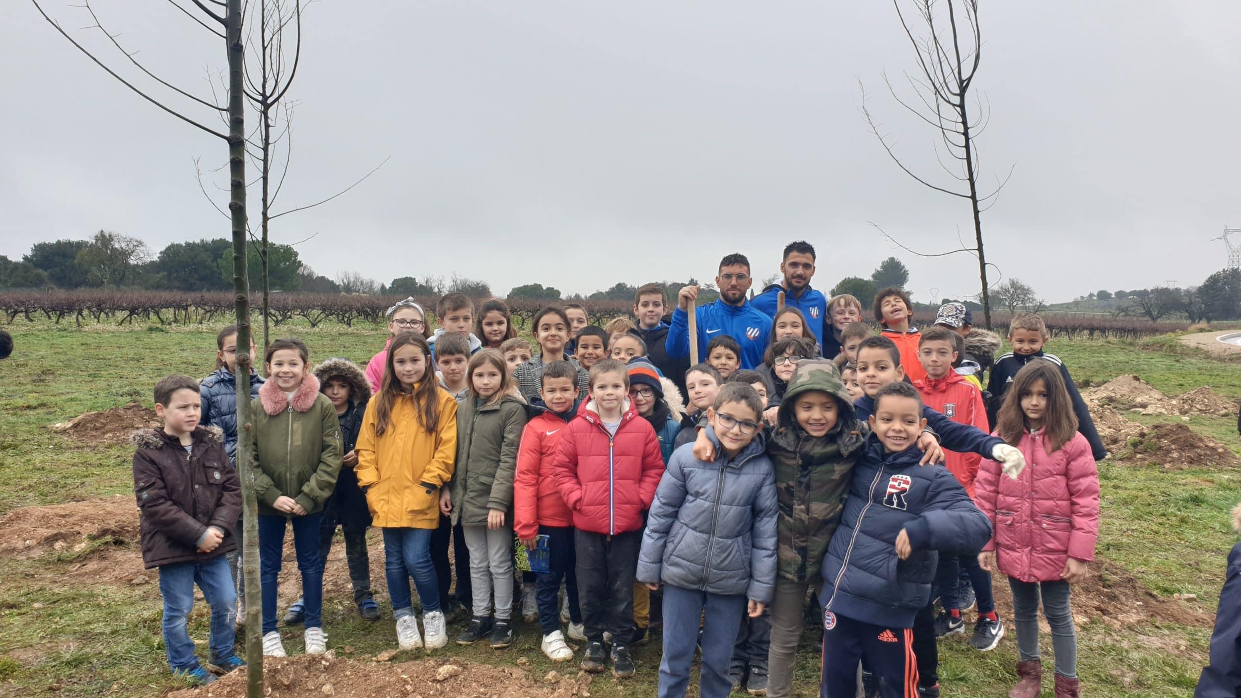 Plantation d'arbres avec le MHSC