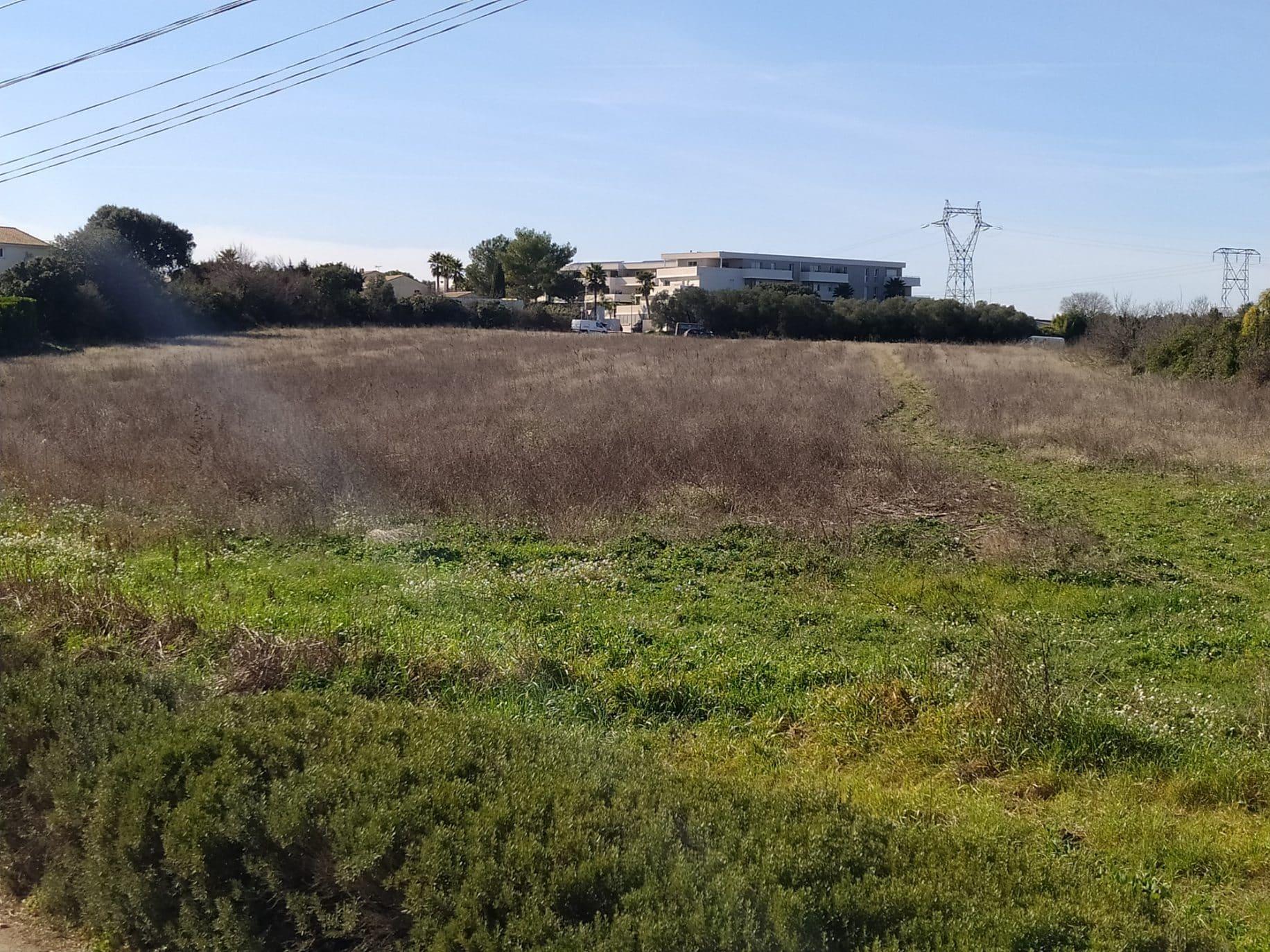 Propriétaires de terrains, pensez à débroussailler leurs alentours!